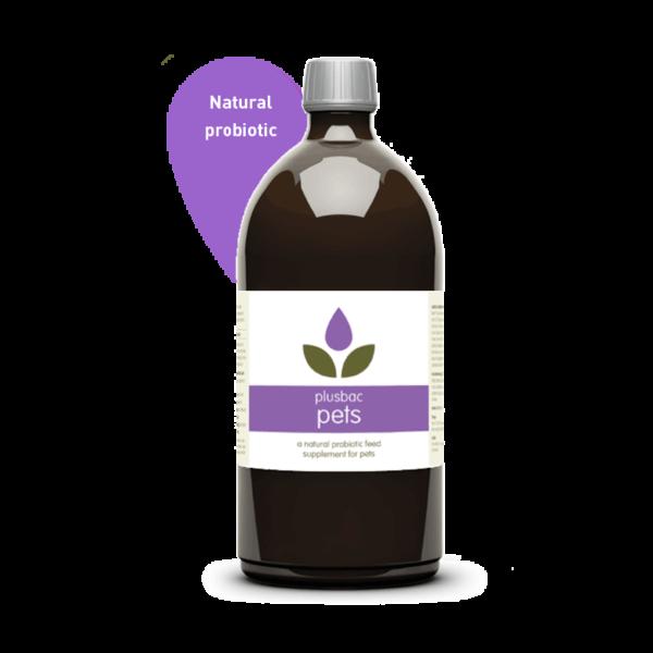 Plusbac Pets Liquid Probiotic